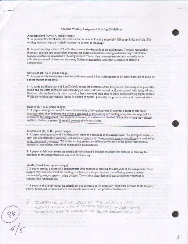 Essay on cricket world cup 2011 final match in hindi picture 1